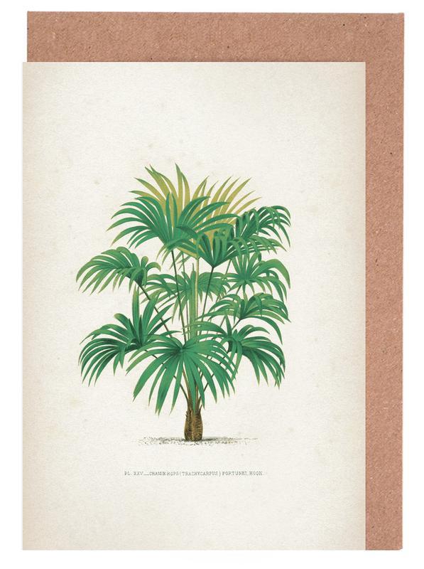 Palmen, Vintage, Les Palmiers 25 - Kerchove -Grußkarten-Set