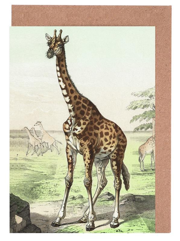 Giraffen, Vintage, Wiederkäuer 22 - Schubert -Grußkarten-Set