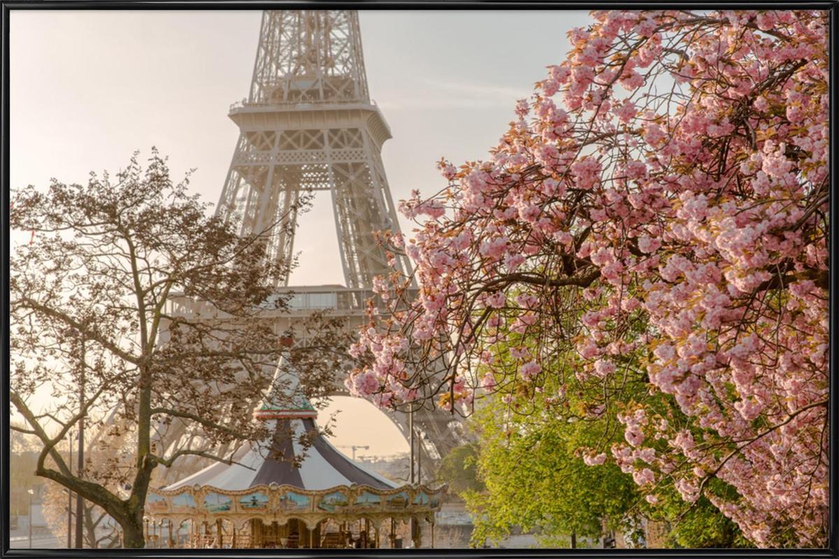Cherry Blossom -Bild mit Kunststoffrahmen