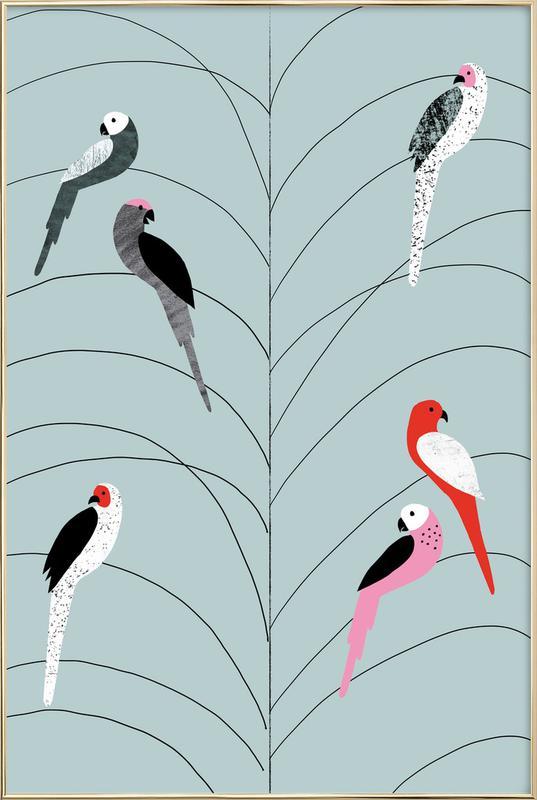 Tropicana - Birds on Branch Grey Poster in Aluminium Frame