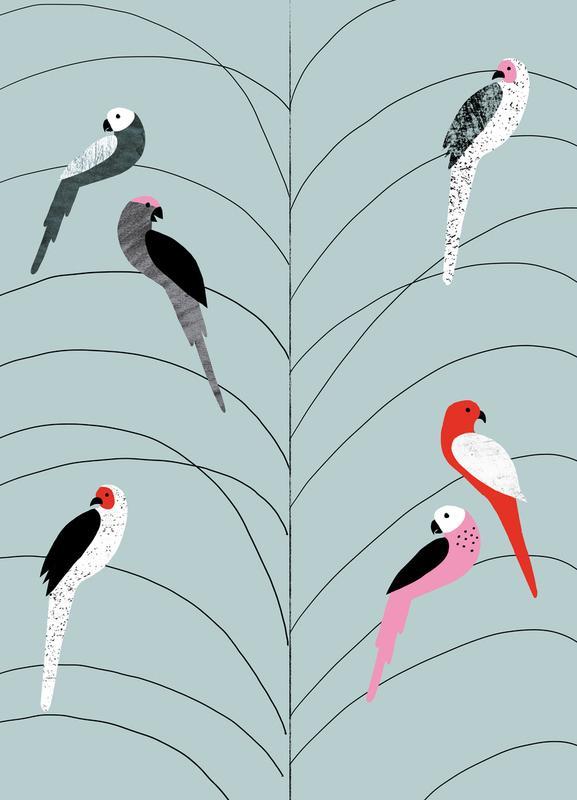 Tropicana - Birds on Branch Grey Canvas Print