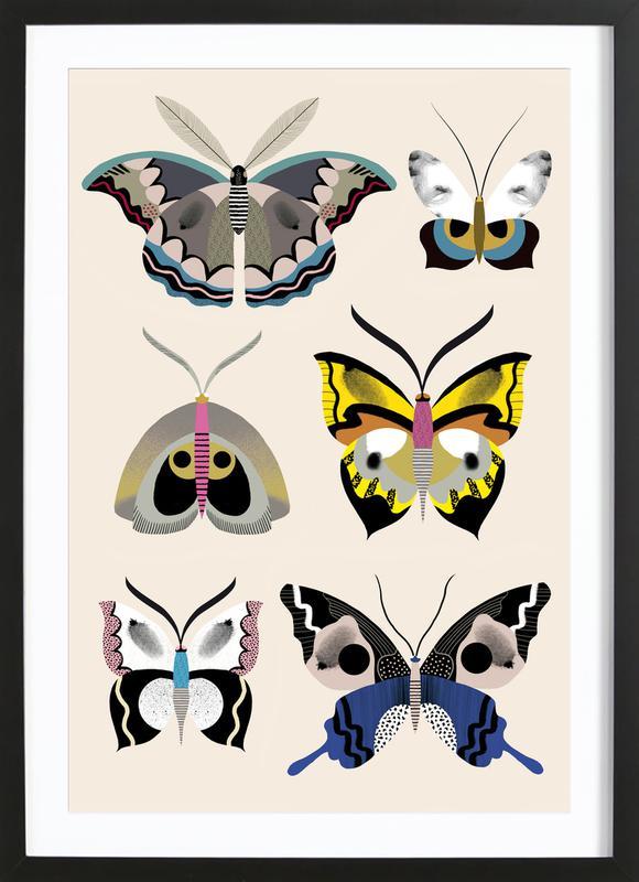 Butterflies - Collection affiche sous cadre en bois