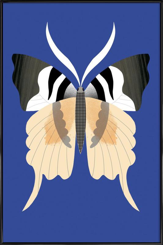 Butterflies - Tailed Emperor -Bild mit Kunststoffrahmen