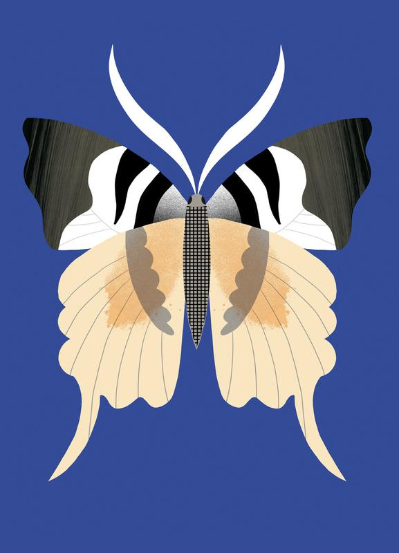 Butterflies - Tailed Emperor -Leinwandbild