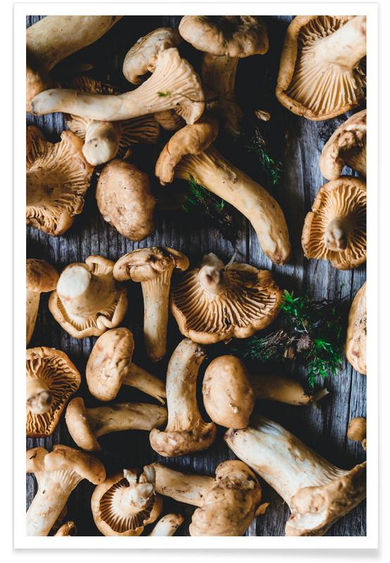 Pilze, Pfifferlinge -Poster