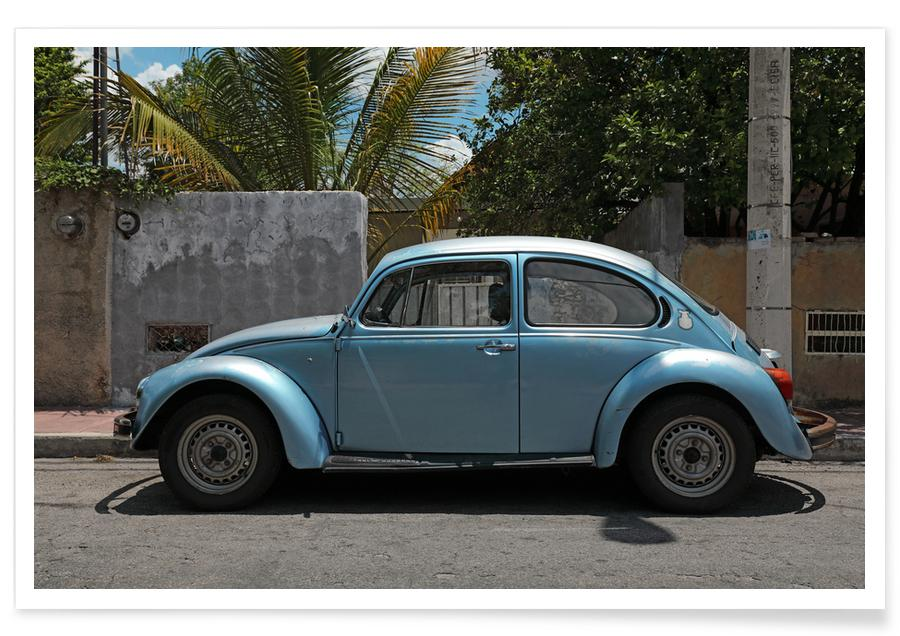 Mexican Beetle 17 affiche