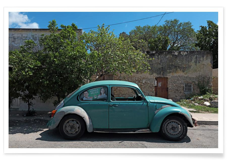 Mexican Beetle 22 -Poster