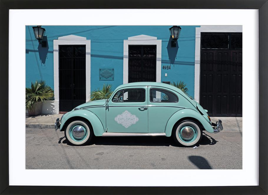 Mexican Beetle 27 Framed Print