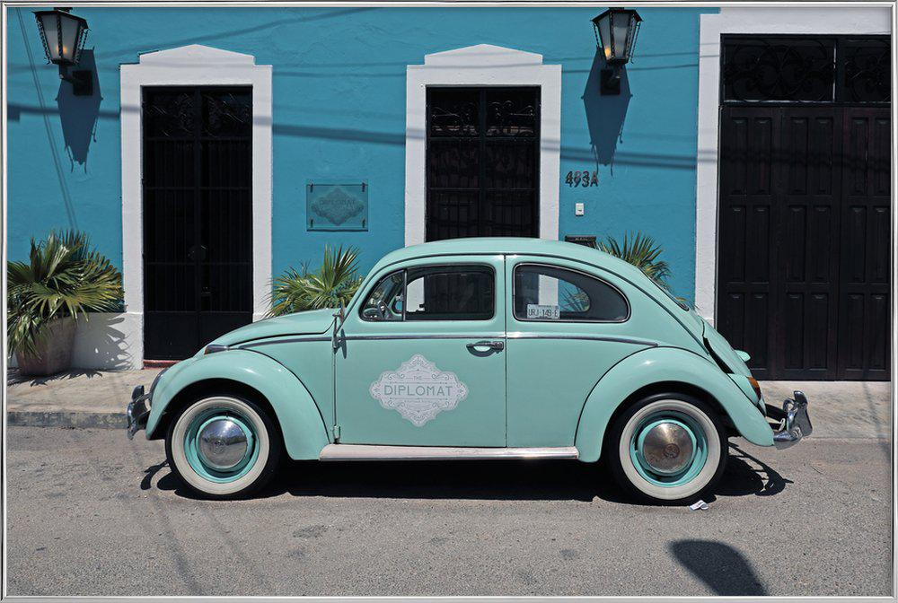 Mexican Beetle 27 affiche sous cadre en aluminium