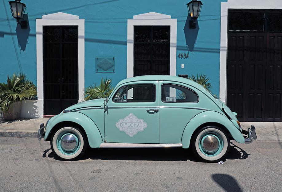 Mexican Beetle 27 Acrylic Print