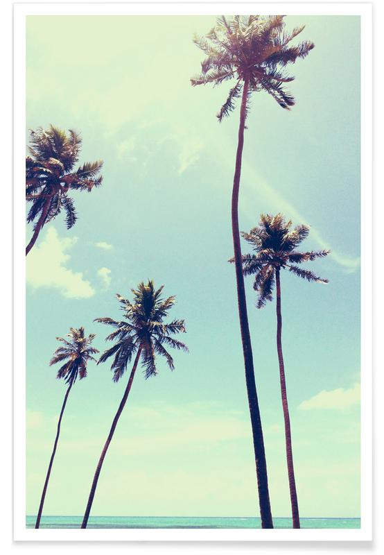 Strande, Palmer, Billede af palmer Plakat
