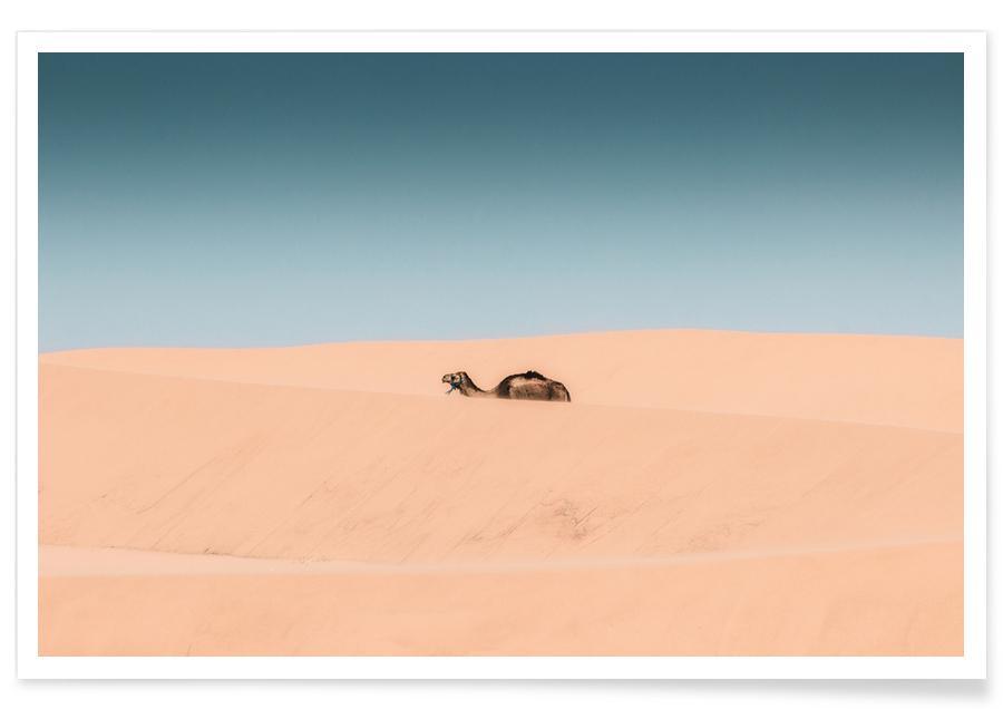 Lone Camel Plakat