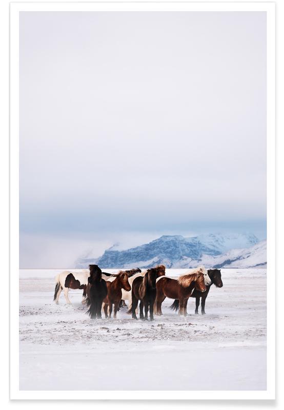 Horses, Standing Against The Elements @ShreyasSane Poster
