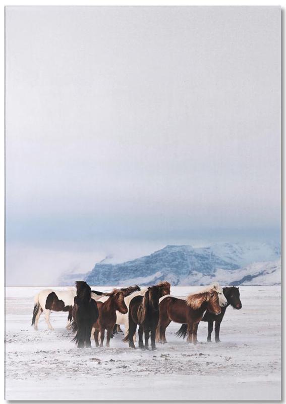 Pferde, Standing Against The Elements @ShreyasSane -Notizblock