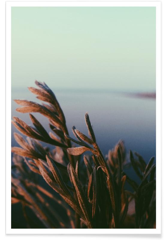 , Reaching Towards Sunset @АлексейКузьмин Poster