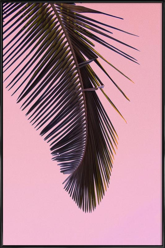 Tropicana Pink by @BineArnold ingelijste poster