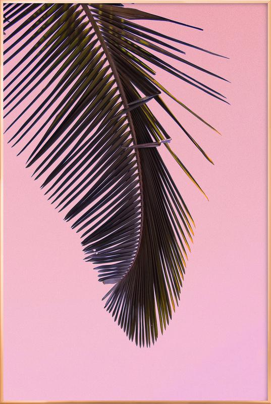Tropicana Pink by @BineArnold Poster in Aluminium Frame