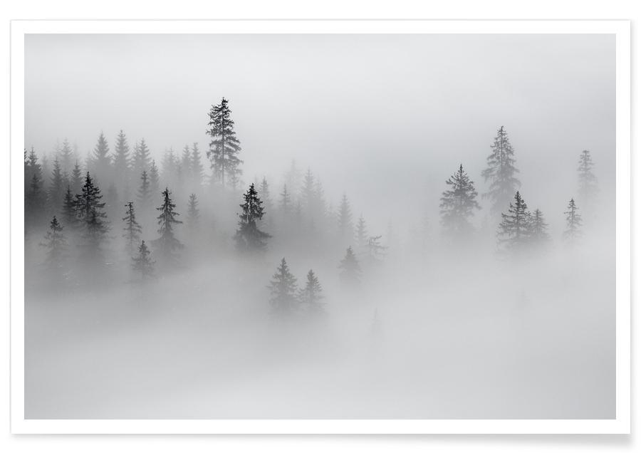 Schwarz & Weiß, Misty Moments @CiprianMiresan -Poster