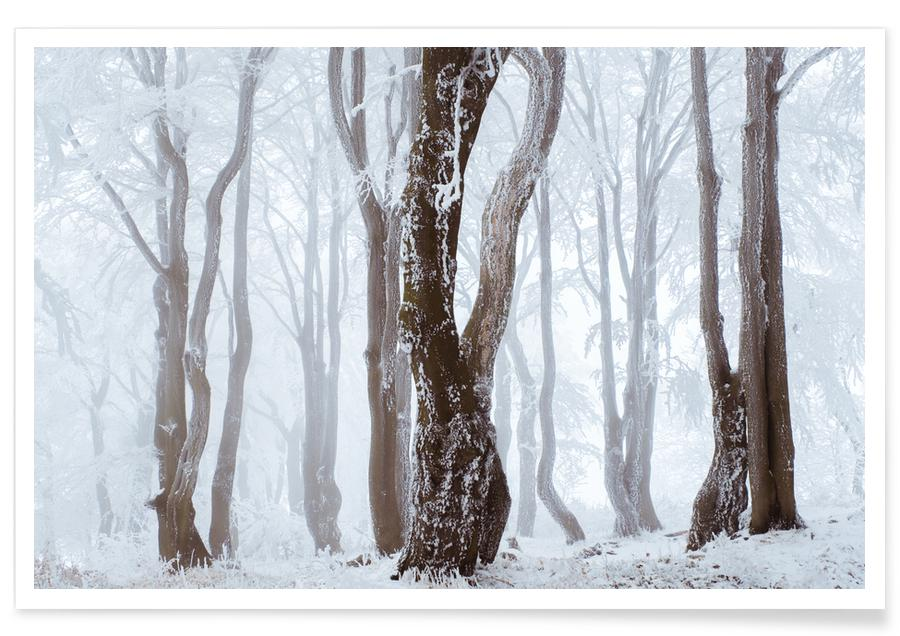 Arbres, Frozen Woodlands @MarcelEscapes affiche