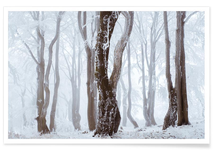 Trees, Frozen Woodlands @MarcelEscapes Poster