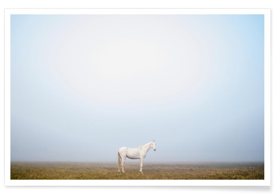 Chevaux, Pegasus @SubhashisHalder affiche