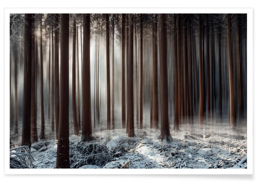 Forêts, Welcome to Narnia @Ohenze affiche