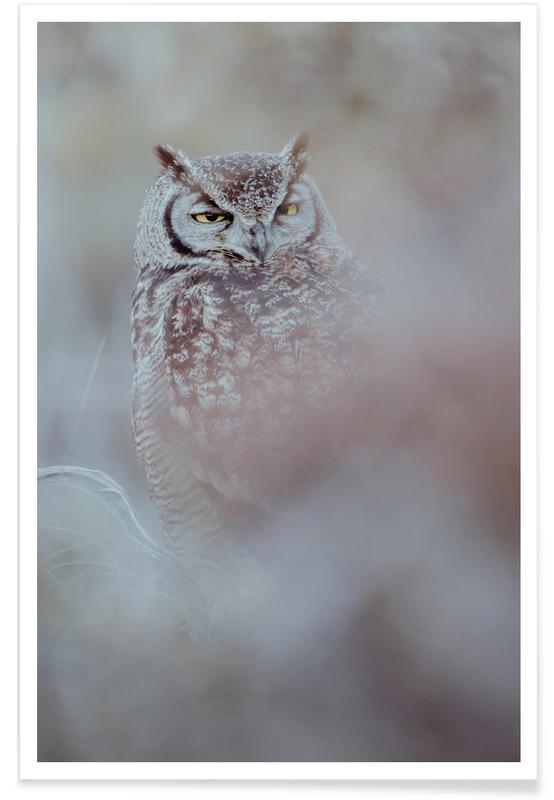 Owls, Why D'You Wake Me by @KevinZaouali Poster