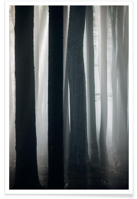 Forests, A Natural Guide by @szabo_ervin_edward Poster