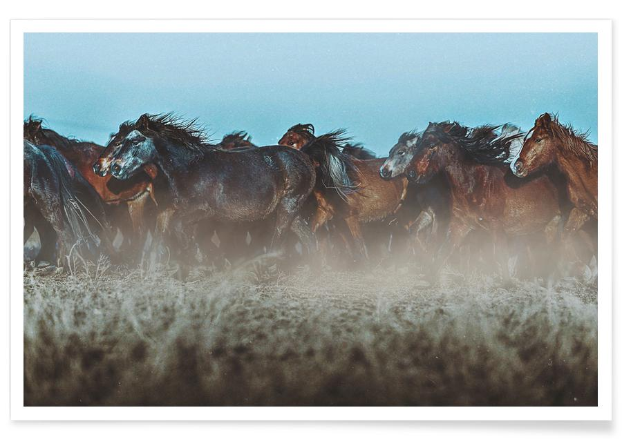 Horses, Following The Herd @osnkyli Poster