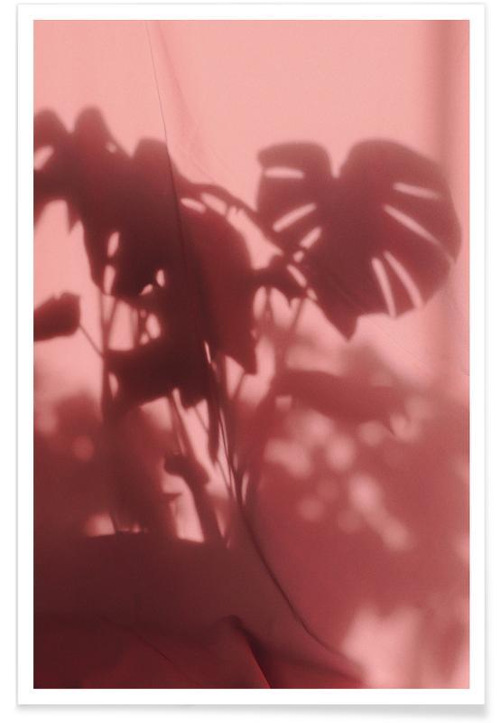 , Monstera Shadow @sotirisbougas Poster