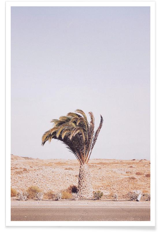 Palmbomen, Beauty in Nature poster