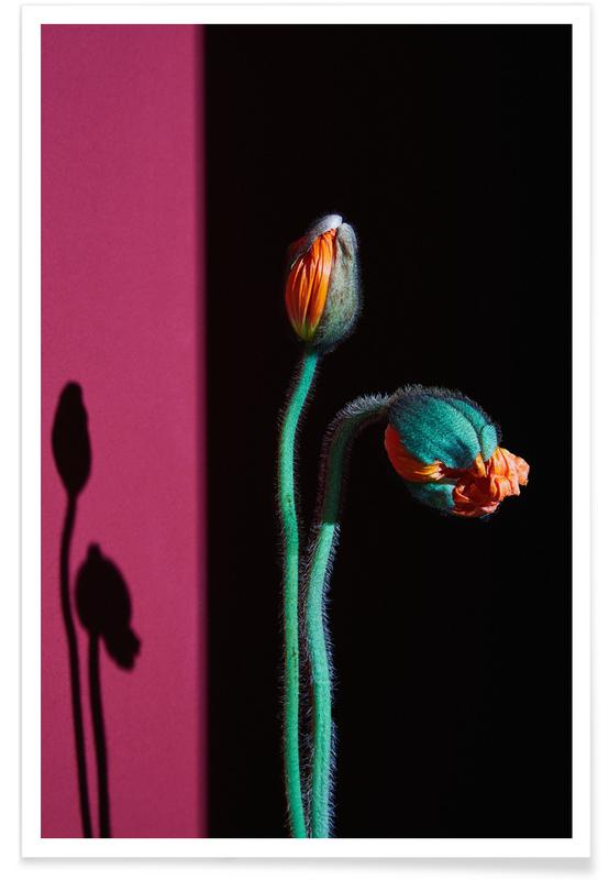 , Nordic Flowers in Bloom affiche