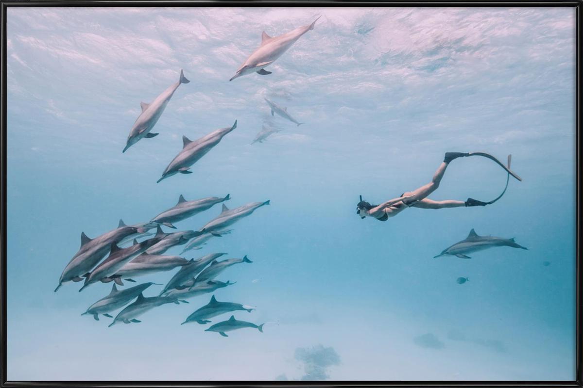 Mermaids by @JimmySong1 Poster i standardram