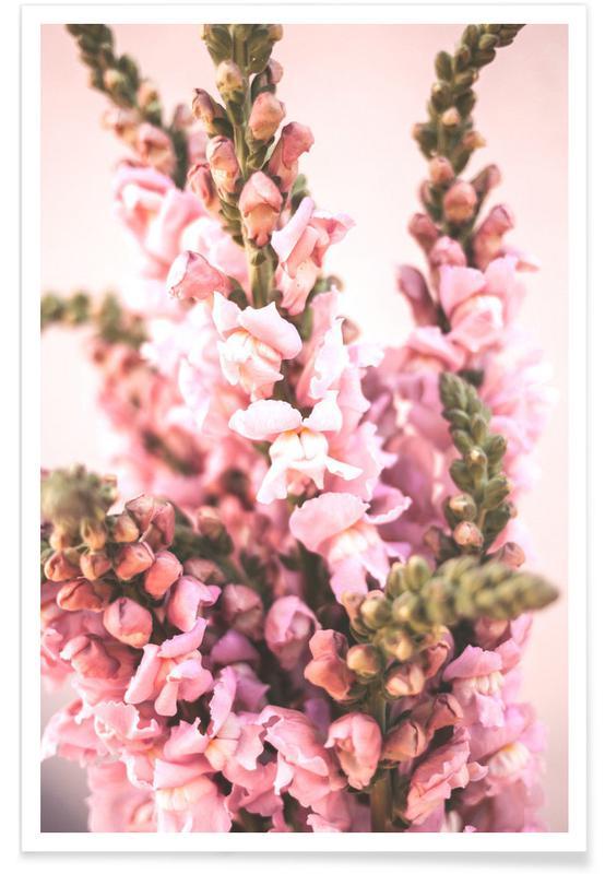 , Pink Petals Poster