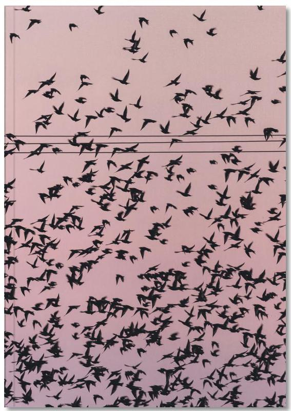 Chaos in Bird Migration by @matthcon01 Notebook