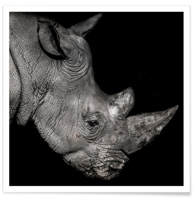 Sort & hvidt, Safari dyr, Rhino Profile by Lothare Dambreville Plakat