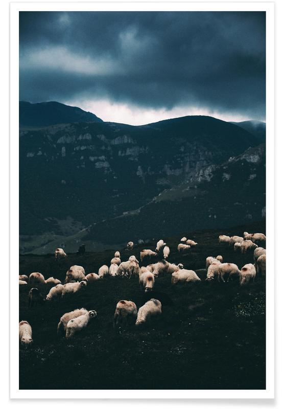 Får, Bjerge, Ride out the Storm by Szabo Ervin-Edward Plakat