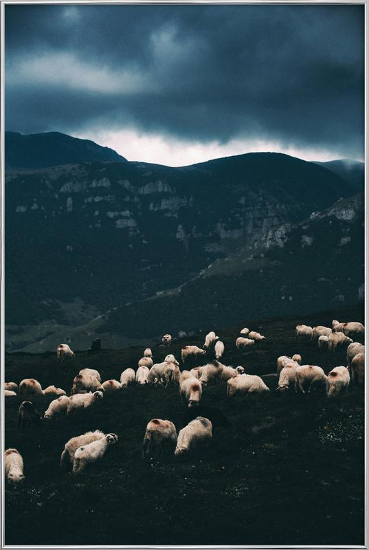 Ride out the Storm by Szabo Ervin-Edward -Poster im Alurahmen