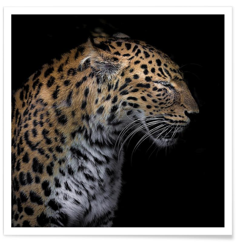Leopard Profile by Lothare Dambreville Poster