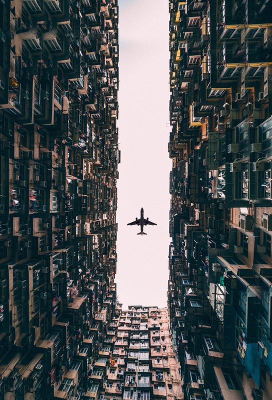 Watch It Soar by Kevin Cho Aluminiumtavla