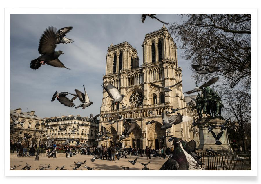 The Birds of Notre Dame by Michael Kraus Plakat