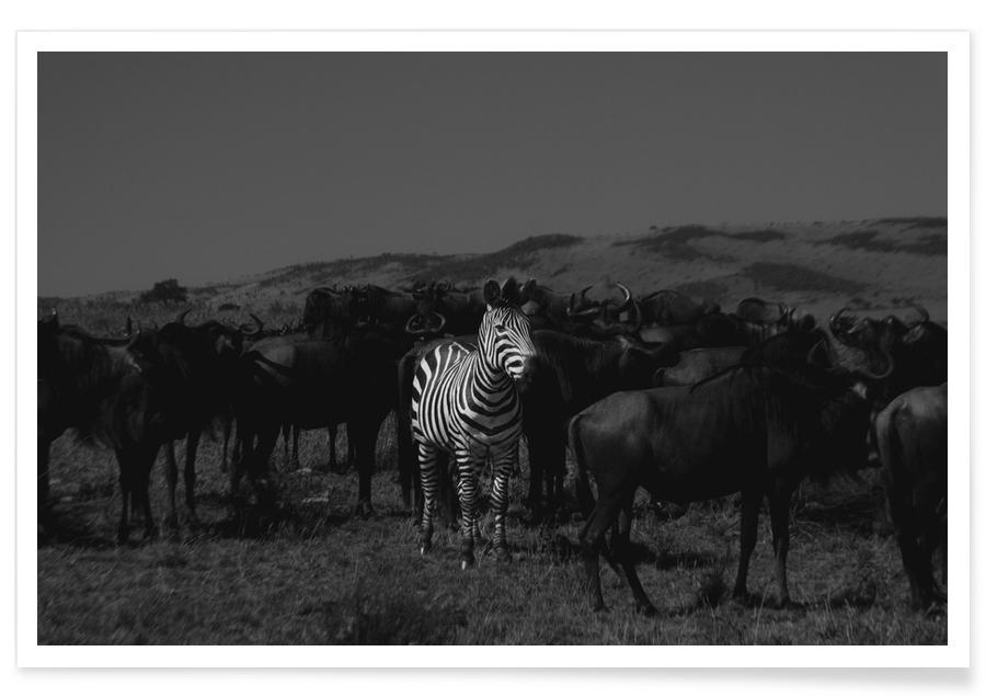 Stand out from the Crowd by Amishpatel affiche