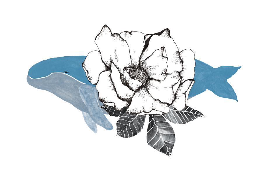 Floral Whale Aluminium Print