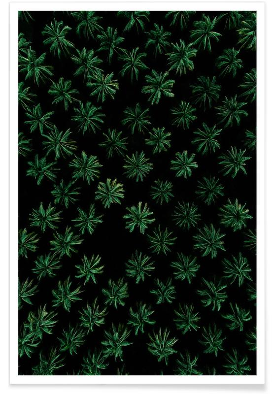 Sleeping Palm Trees Poster