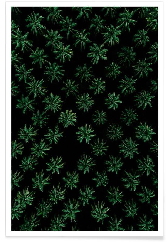 Bossen, Sleeping Palm Trees poster