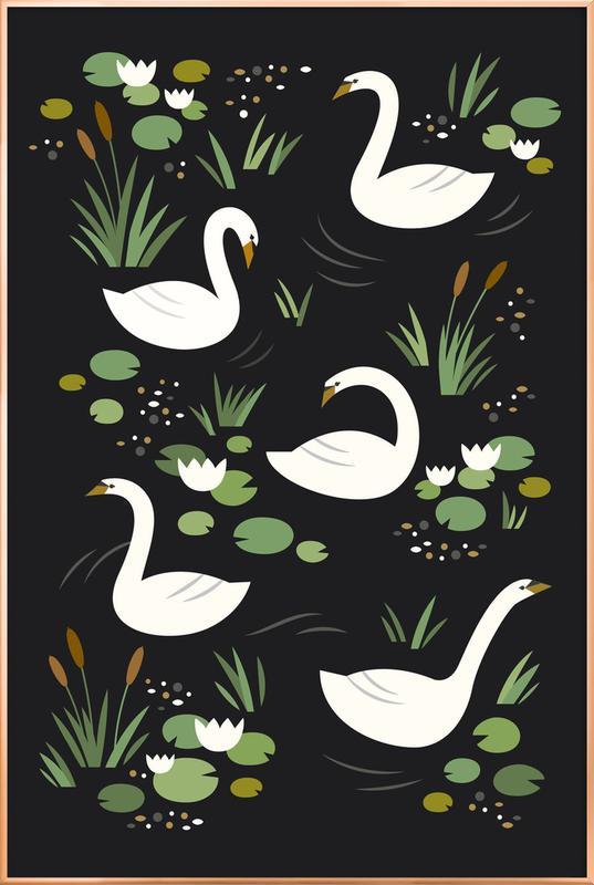 Swan Lake Poster in Aluminium Frame