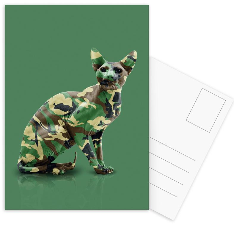 Camoucat -Postkartenset