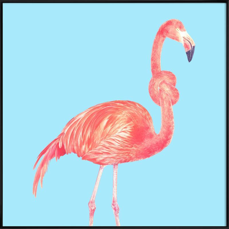 Flamingo with a Big Problem -Bild mit Kunststoffrahmen