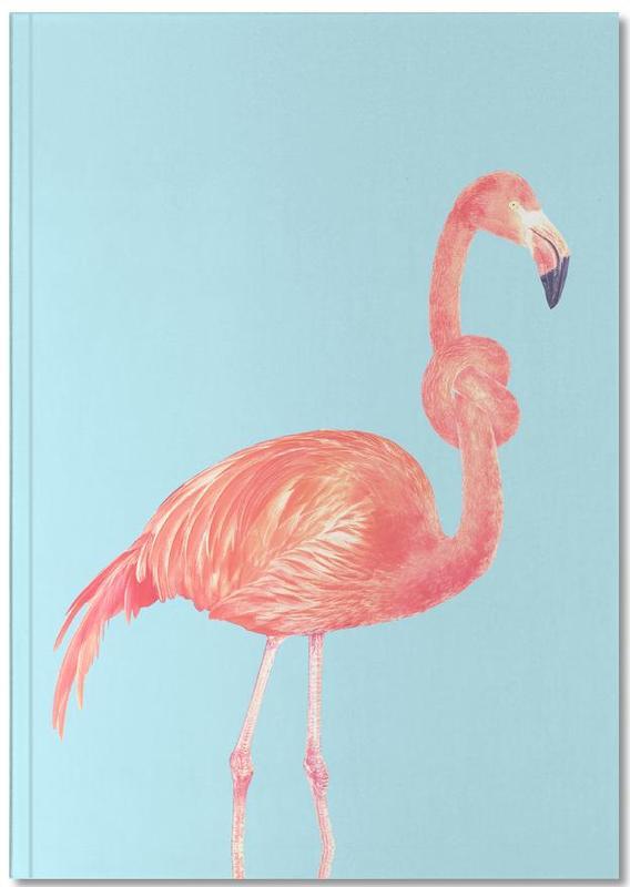 Flamingos, Lustig, Flamingo with a Big Problem Notebook