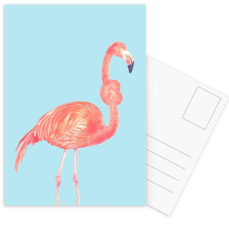 Flamingo with a Big Problem -Postkartenset